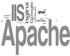 Configuring IIS for Client Certificate Mapping Authentication
